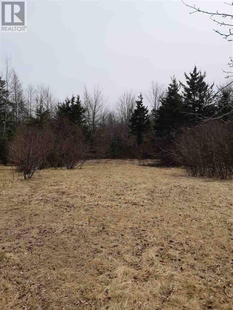Cole Road, Meaghers Grant, Nova Scotia  B0N 1V0 - Photo 2 - 202000040
