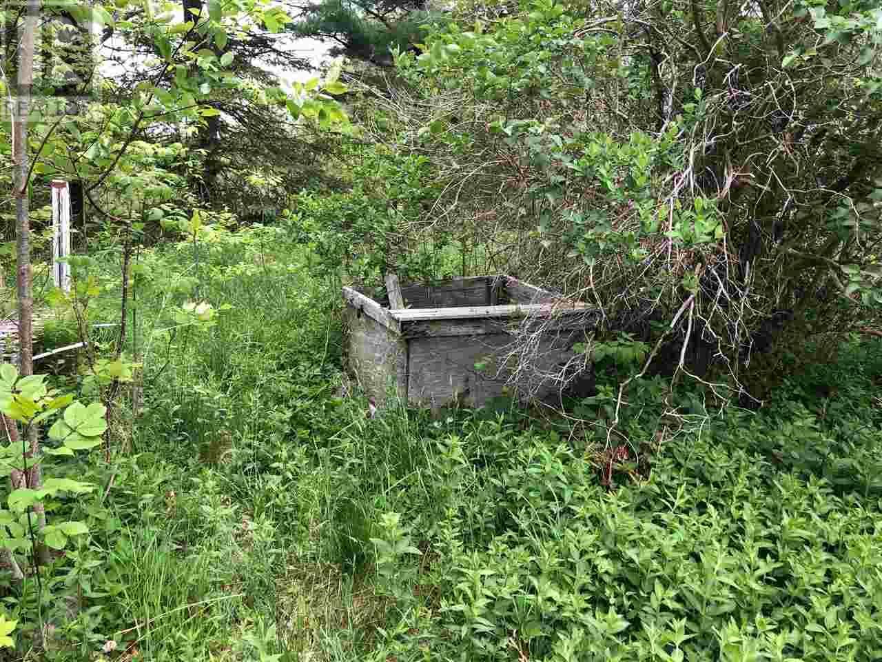 6231 Highway 340, Forest Glen, Nova Scotia  B5A 5R1 - Photo 4 - 202009435