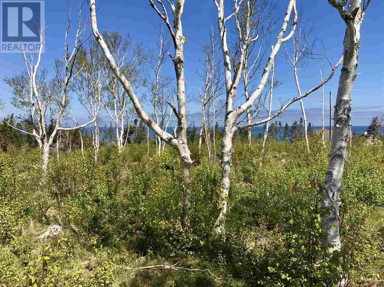Lot 3 Seabrook Way, Doctors Brook, Nova Scotia  B2G 2L1 - Photo 2 - 202015810