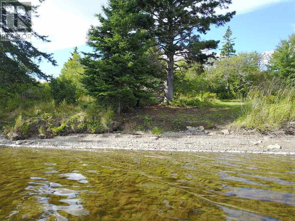 1253 205 Highway, Baddeck Bay, Nova Scotia  B0E 1B0 - Photo 4 - 202017664